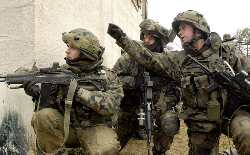 https://syncreticstudies.files.wordpress.com/2014/09/polish_army_poland_soldiers_combat_uniforms_001.jpg